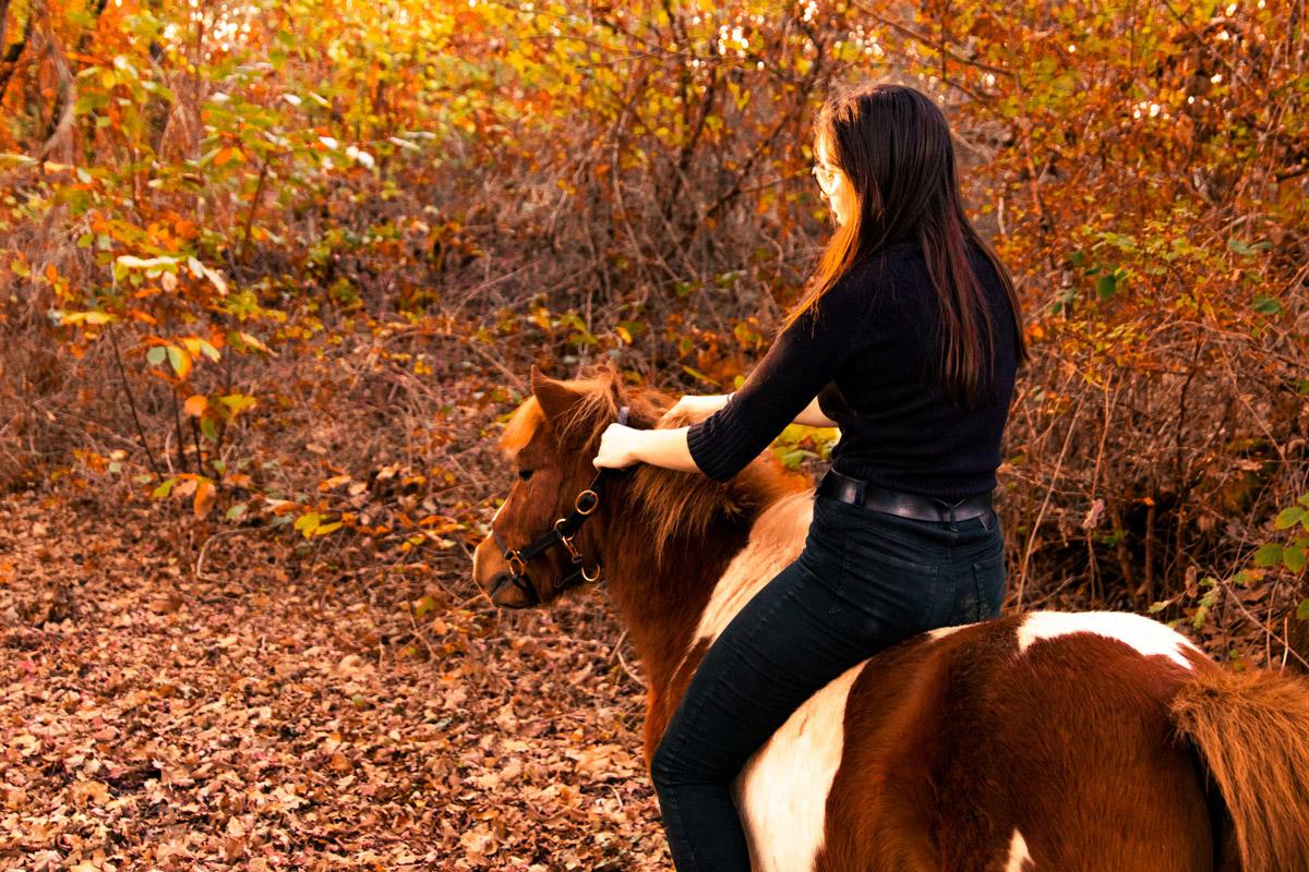 Shooting équestre aux couleurs d'automne à Tauxigny avec Chloé et son poney